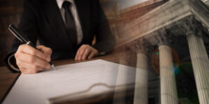 lawyer attorney working